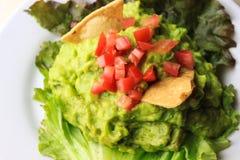 Guacamole, avocado healthy delicious salad with tomatoe and totopos stock photography
