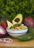 Guacamole and chips Royalty Free Stock Image