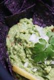 guacamole cilantro Стоковые Фотографии RF