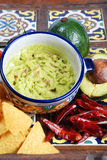Guacamole et nachos Photographie stock