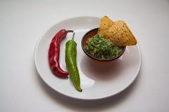 Guacamole et nachos image stock