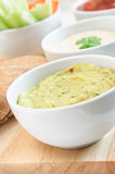 Guacamole, Hummus et immersions de Salsa Image libre de droits