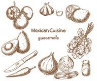 Guacamole ingredienser av maten vektor illustrationer