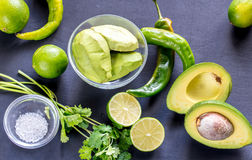 Guacamole ingredients Stock Images