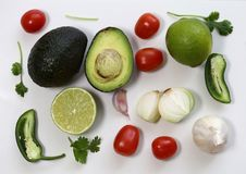 Guacamole Ingredients in a Still Life Photo. Guacamole ingredients in a still live photo. The photo includes avocado, cilantro, tomatoes, lime, jalapeno, onion royalty free stock image