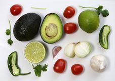 Guacamole Ingredients in a Still Life Photo. Guacamole ingredients in a still live photo. The photo includes avocado, cilantro, tomatoes, lime, jalapeno, onion royalty free stock photo