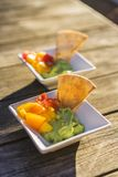 Guacamole and mango salsa Stock Image