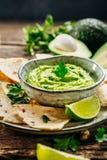 Guacamole med nachos royaltyfri bild