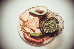 Guacamole mexicain photographie stock
