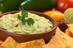 Guacamole with Nachos Royalty Free Stock Photo