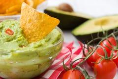 Guacamole with nachos and tomatoe Stock Photography