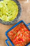 Guacamole och salsa Royaltyfri Fotografi