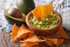 Guacamole sauce, nachos and avocado closeup. Horizontal Royalty Free Stock Photos