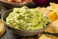 Πράσινο σπιτικό Guacamole με Tortilla τα τσιπ Στοκ Φωτογραφία