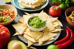 Guacamole, tortillachiper och salsa Mexicanskt matval royaltyfri fotografi