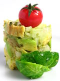 Guacamole tower Royalty Free Stock Photo