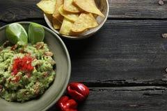 Guacamole y nachos hechos en casa Imágenes de archivo libres de regalías