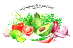 Guacamoleingredienser Arkivbild