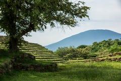 Guachimontones om Piramides stock fotografie