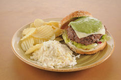 Guacomole burger with coleslaw Stock Photography