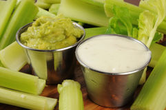 Guacomole and Ranch Dressing Dips Royalty Free Stock Photo