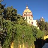 Guadalajara/Metropolitaanse Kathedraal Mexico Royalty-vrije Stock Foto