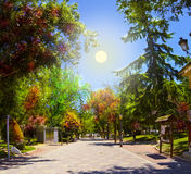 Guadalajara-Park Lizenzfreies Stockfoto