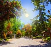 Guadalajara park Royalty Free Stock Photo