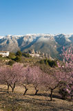 Guadalest valley Royalty Free Stock Photos