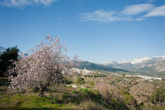 Guadalest valley Stock Image