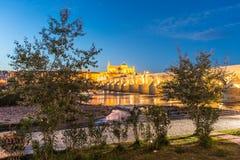 Guadalquivir river in Cordoba, Andalusia, Spain. Guadalquivir river as it passes through the city of Cordoba in the province of Andalusia, Spain royalty free stock photo