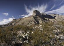 guadalupe εθνικό πάρκο βουνών Στοκ Φωτογραφίες
