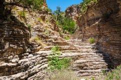 guadalupe εθνικό πάρκο βουνών στοκ εικόνα με δικαίωμα ελεύθερης χρήσης