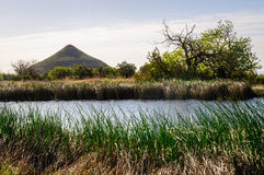 guadalupe εθνικό πάρκο βουνών στοκ εικόνες με δικαίωμα ελεύθερης χρήσης
