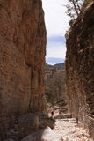 guadalupe berg Royaltyfria Bilder
