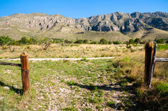 guadalupe bergnationalpark royaltyfri bild