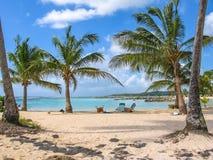 Guadalupe el Caribe Foto de archivo libre de regalías
