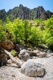 guadalupe gór park narodowy obrazy stock