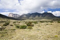 Guadalupe Mountains Stock Images