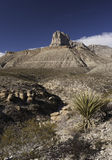 Guadalupe Mountains National Park Royalty Free Stock Image