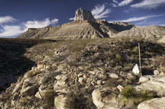 Guadalupe Mountains National Park Stock Photos