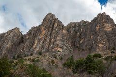 Guadalupe Mountains Texas Royaltyfria Bilder