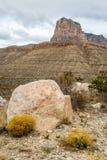 Guadalupe Mountains Texas imagens de stock
