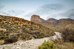 Guadalupe Mountains Texas Royalty Free Stock Photos