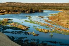 Guadalupe Nipomo Dunes National Reserve Kalifornien arkivbild