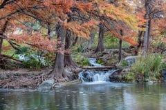 Guadalupe River in Ingram Texas stockbilder