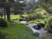guadarrama山脉西班牙 免版税库存图片