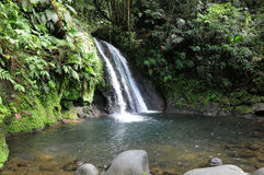 Guadeloupe. France, Crayfish Cascade in Guadeloupe stock photos