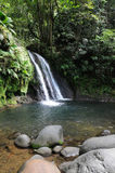Guadeloupe. France, Crayfish Cascade in Guadeloupe stock photo