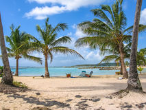 Guadeloupe Caribbean. Coconut palms, turquoise sea and white sandy beach of famous Sainte-Anne, Guadeloupe, Antilles, Caribbean royalty free stock photo